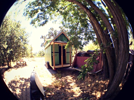 Fisheye view of barn raiser, under a tree.