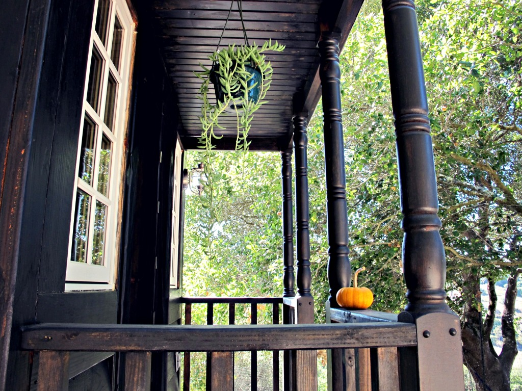 A side view of the porch, with a hanging plant.